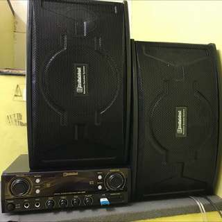 """Christmas special Martin Roland BN-302 with 6"""" Speaker"""
