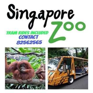 Zoo Zoo Zoo Zoo Zoo Zoo Zoo Zoo Zoo Zoo Zoo Zoo Zoo Zoo Zoo Zoo
