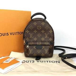 Louis Vuitton Palmsprings (Mini Size)
