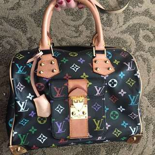 Louis Vuitton Speedy Multicolor replica