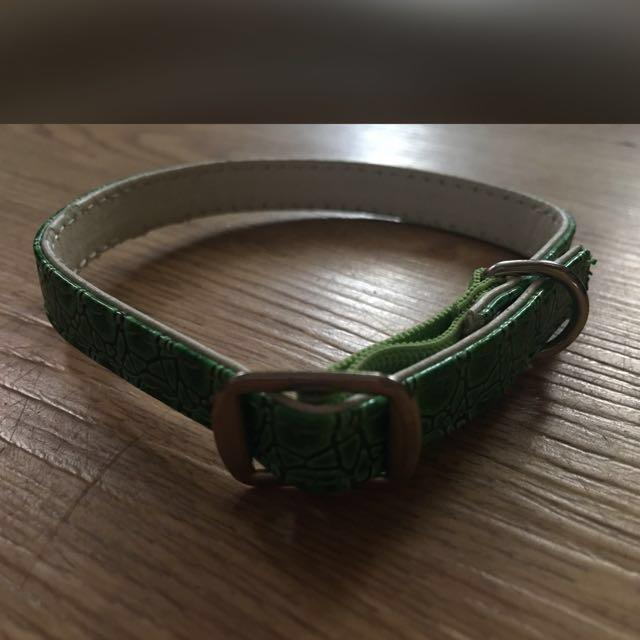 Green Pet Collar