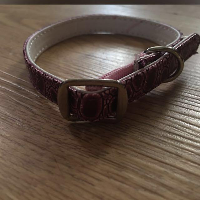 Pink Pet Collar