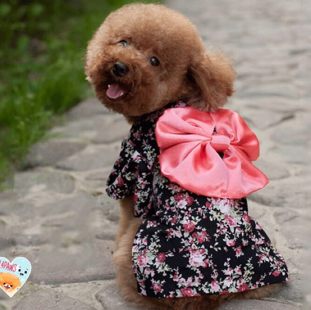 [PO] DOG KIMONO CLOTHE