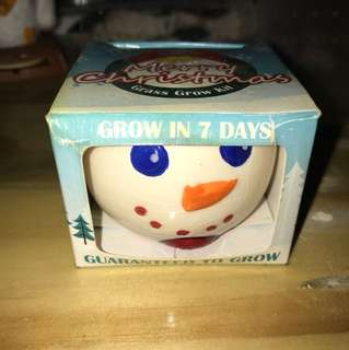 Grass Grow Kit Christmas Snowman