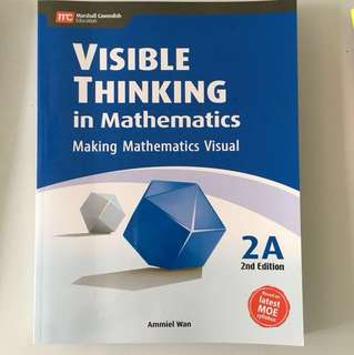 Visible Thinking in Math 2A