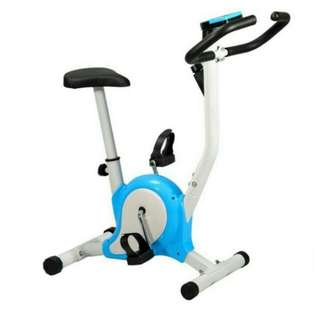 Indoor Upright Stationary Belt Exercise Bike