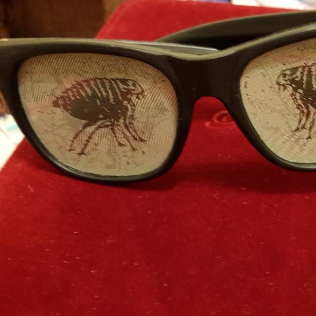 全新造型眼鏡