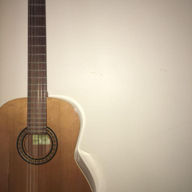 Acoustic Concert Guitar