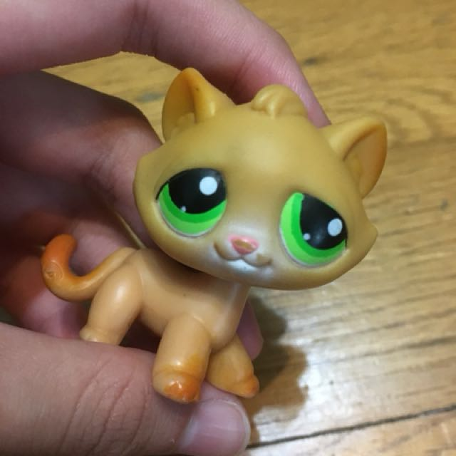 Lps Shorthair Cat 72 Cute Cat 2018