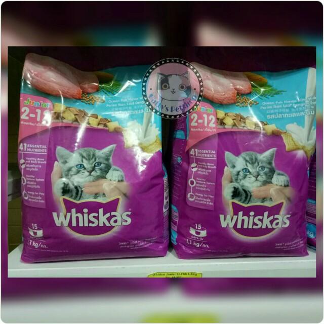 Makanan Kucing Whiskas Junior 1 1kg Pet Supplies Food On Carousell