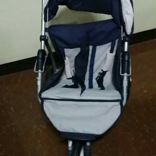 Stroller for puppies