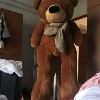Very huge bear