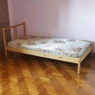 Single Bed frame x1 +  mattress x1