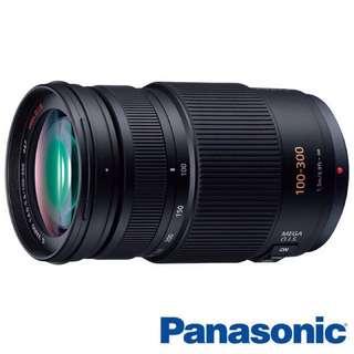 Panasonic LUMIX G VARIO 100-300mm F4-5.6 MEGA O.I.S.