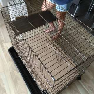 Pet Cage (Cats or Puppies)