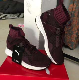 PUMA EVOKNIT ( 💯 Authentic )
