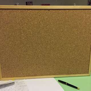 Double sided cork board