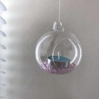 Glass plant 🌱 decor hanging globe