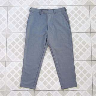 Gray Cropped Pants (Tailored)