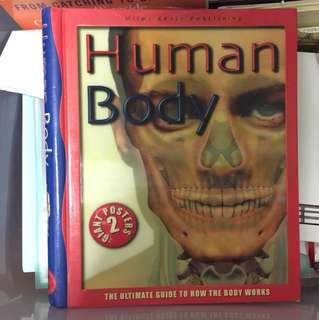 human body childrens book with posters 人體圖書