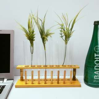 Modern Home & Office Decor: Chic Science Test Tubes with Wooden Stoppers and Rack for Plants