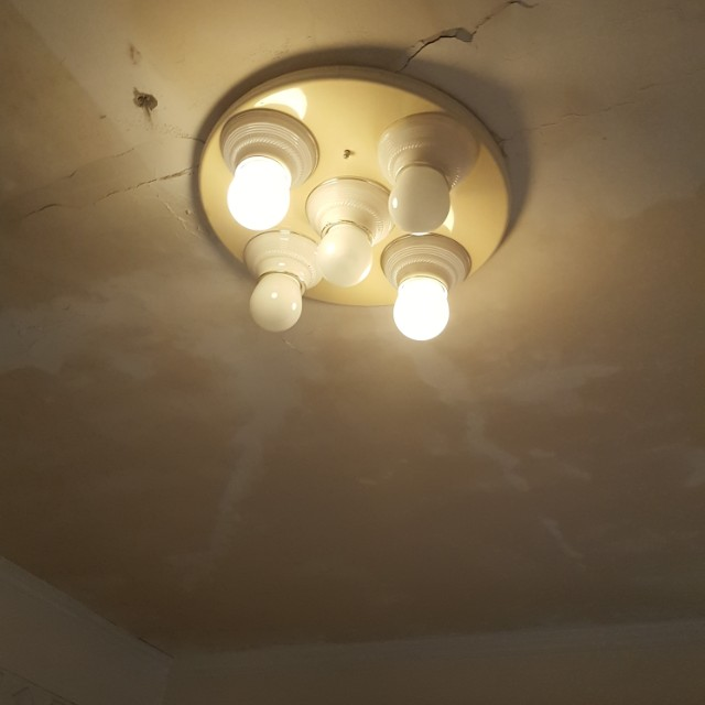 燈具 美術燈 省電燈泡
