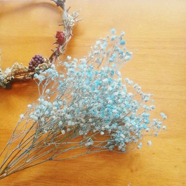 Bunga Baby's Breath Kering warna Biru