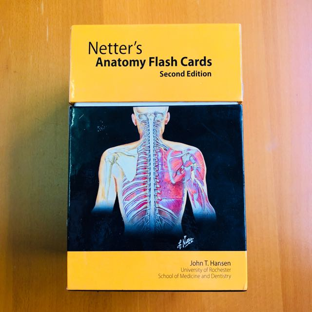 Netters Anatomy Flash Cards Books Stationery Textbooks On Carousell