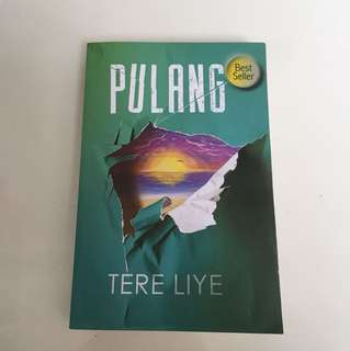 novel pulang tere liye
