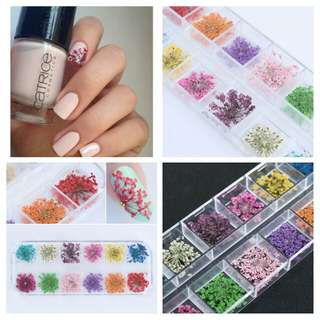12 Patterns 3D Dry Flowers Stickers Dried Nail Art Decoration DIY Manicure Tools w/box # 5004