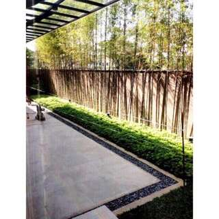 Ayala Southvale Brand New House & Lot For Sale