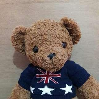 BROWN TEDDY BEAR / BONEKA ANAK