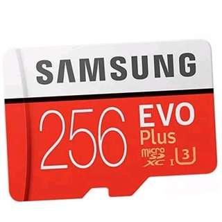 256gb Samsung Evo micro SD card