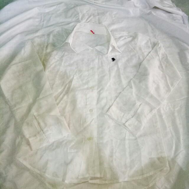Long sleeves white