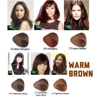 #BUY2FREE1 Warm Brown Korea Professional Hair Color Cream