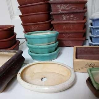 Bonsai Pots ( Various sizes and shapes)