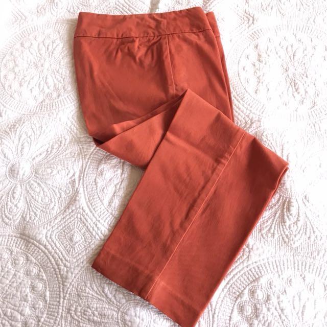 British India Pants