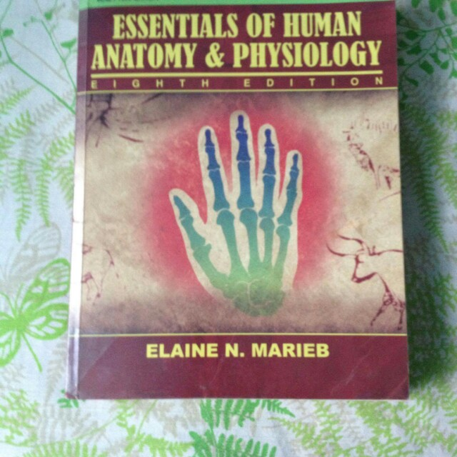 Essentials of Human Anatomy & Physiology 8th Edition, Textbooks on ...