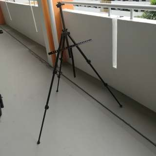 (NEW) Light Weight Easel Stand (with carry bag)