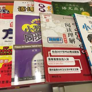 Primary 5 A& B Chinese Assessment book