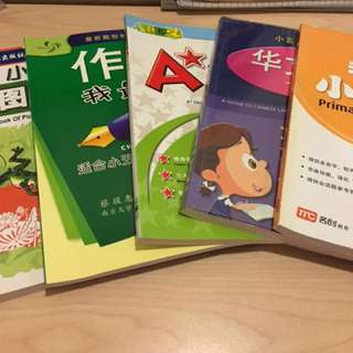 Primary 5 Chinese Composition book