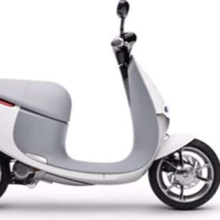 Gogoro-白色 使用一年半 高階 車牌號碼挑選過 可議