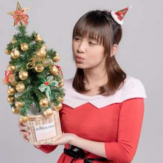 POHON NATAL COKLAT / CHRISTMAS TREE CHOCOLATE