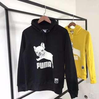 Puma法鬥款衛衣@110  胸前法鬥狗狗大logo印花 情侶款加絨衛衣兩色 黃/黑