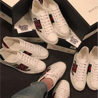 Gucci Snake Aces