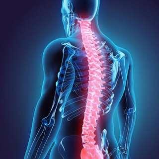 Terapi tulang belakang
