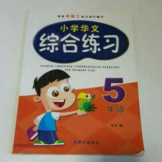 FREE NM📬Chinese Language Comprehensive Exercises For Primary 5