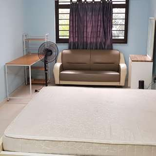 Spacious Master bedroom for rent