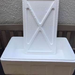Heavy Duty Styrofoam Box 750X430X270X30mm