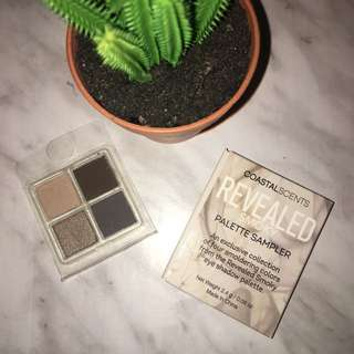 Coastal Scents Palette sampler